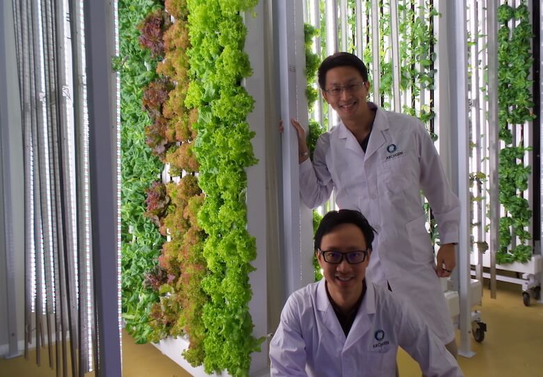 Growing more food with less: R&D partnerships give S'pore firms a leg-up
